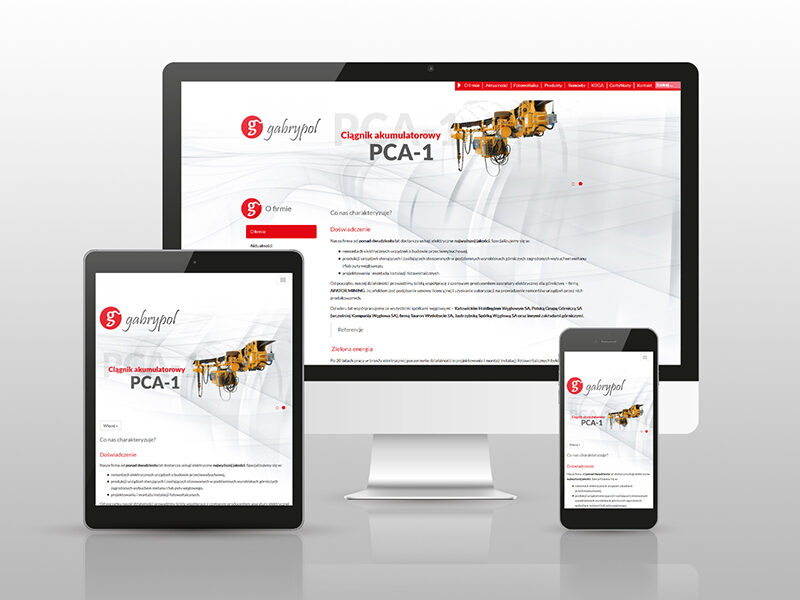 Strona z katalogiem internetowym